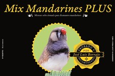 Mix Mandarines Plus